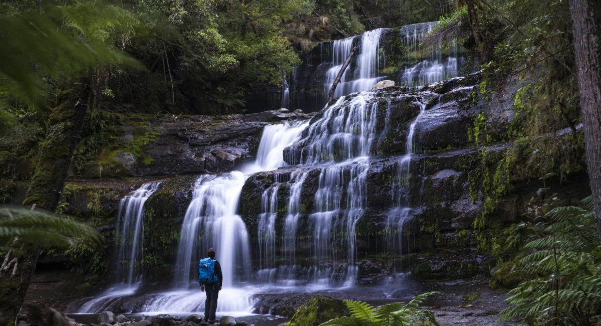Mt-Field-Waterfall_Sean-Scott-Photography.jpg